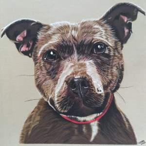 Een portret van een lieve hond!