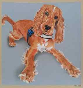 Een vrolijke cocker spaniël-pup.